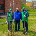 Посадка деревьев на территории школы №72